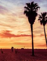 Venice Beach -  Não dá pra ir a Califórnia sem passar por Venice Beach. Cercada por diversão, a praia atrai banhistas em forma que praticam esportes como frisbee e vôlei,  além de ser um ótimo lugar pra tomar sol, aproveitar o dia e curtir um por do sol incrível em um clima que só a California tem!