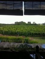 A região vinícola de Carmelo fica às margens do Rio da Prata, na altura de Tigre na Argentina. Há inclusive uma balsa que faz o transporte. Por lá, além do restaurante e da queijaria, a Narbona mantém um hotel de charme. Os vinhos são feitos nessa sede