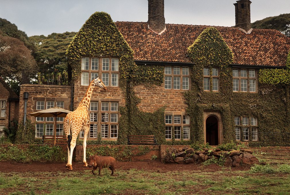giraffe-manor-4